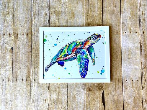 Eugene Sea Turtle