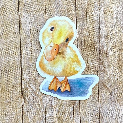 Little Duck Magnet