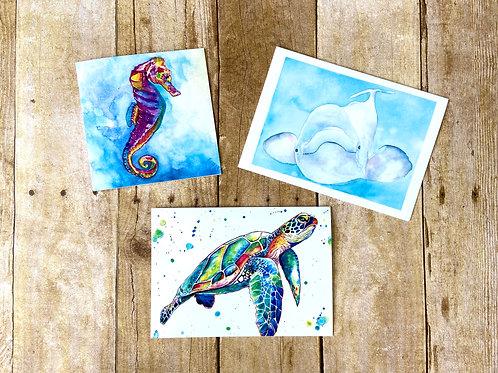 Ocean Animal Note Card Set