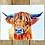 Thumbnail: Francisco the Highland Cow