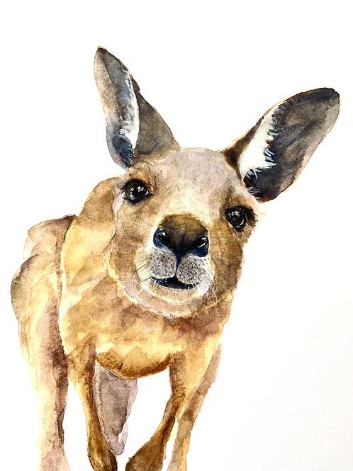 Delilah Kangaroo Watercolor Print