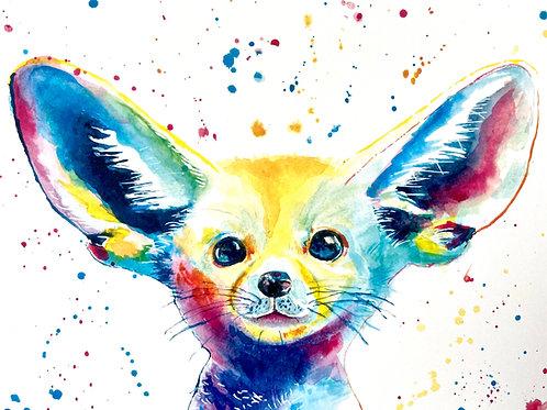 Ralph the Fennec Fox