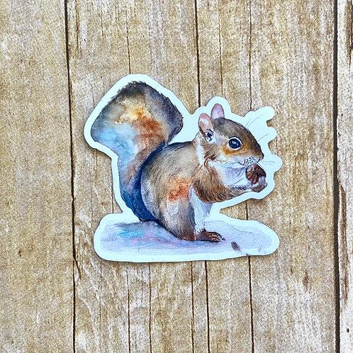 Judy Squirrel Magnet