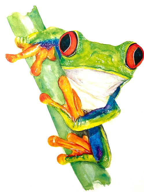 Kelli Sue Tree Frog Watercolor Print