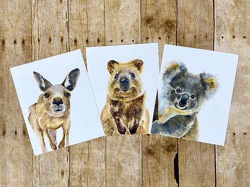 Australian Animal Print Collection