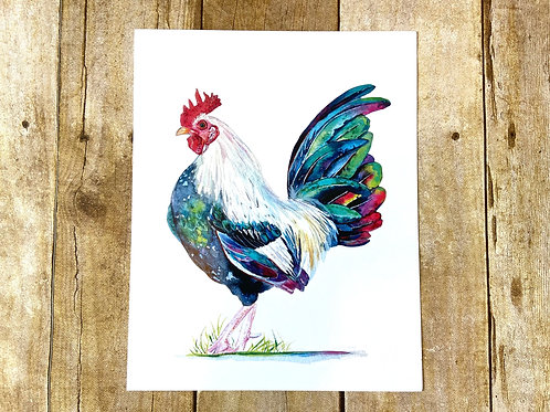 Napoleon the Rooster