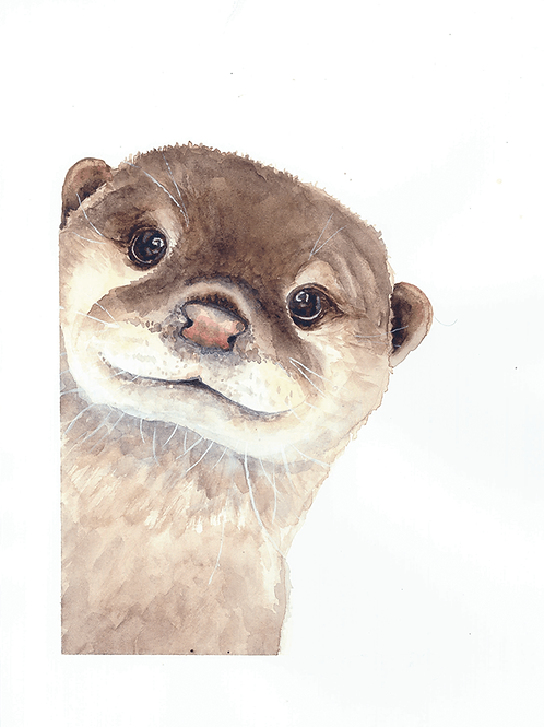 Dave Otter Watercolor Print