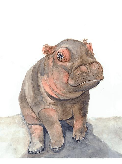 Percival Hippo Watercolor Print