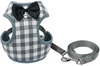 bow tie dog vest leash