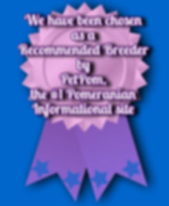 New-Pom-Award (400 x 486).jpg