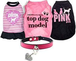 top dog model clothes