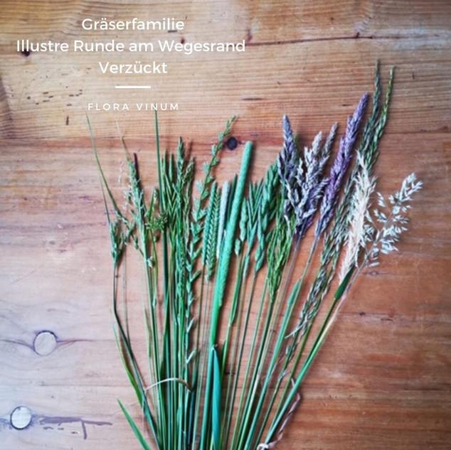 Flora_Vinum_Gräser.jpg