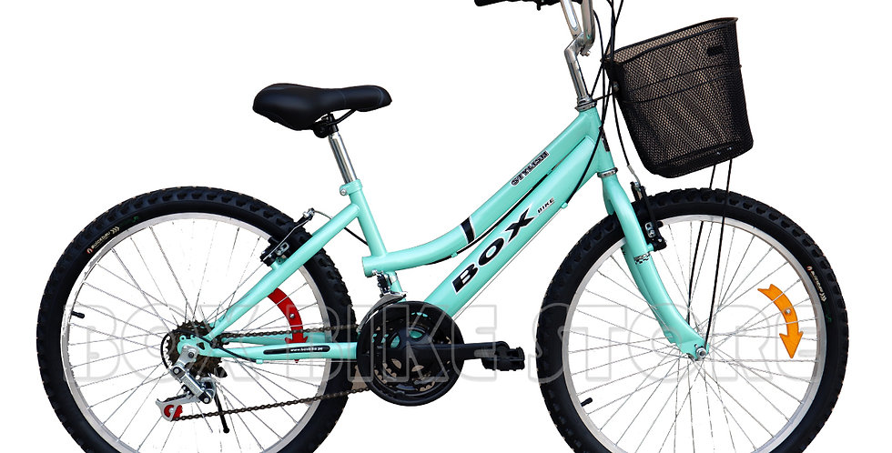 Bicicleta Box Bike Campera Aro 24 - Verde