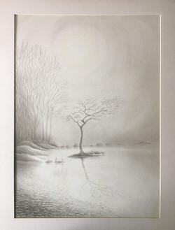 21F George Kuehnel Milarrochy Oak