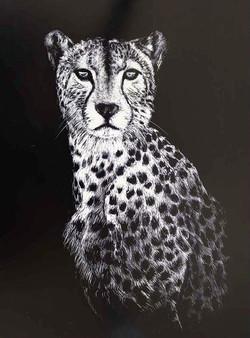 43FMike Fleming Leopard