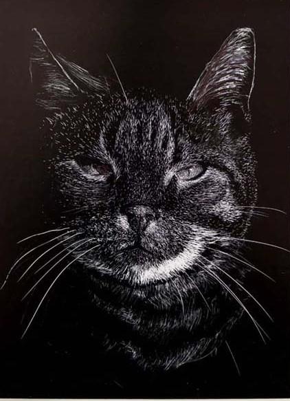 41 Mike Fleming Cat