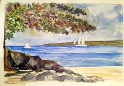 90 Anthea Silvester Beach