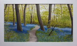 29F Jenny Beard Bluebell Wood
