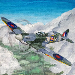 74 Sophie Knight Spitfire