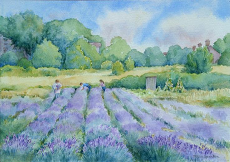 87 Tessa Spanton The Lavender Pickers