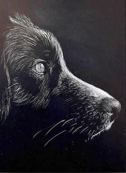 42FMike Fleming Dog