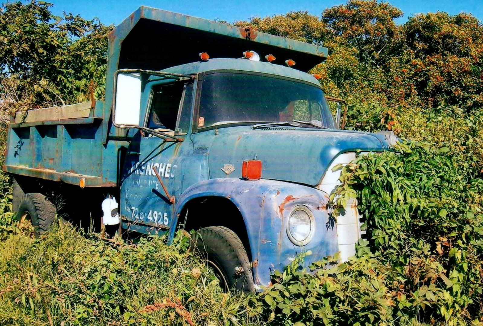1962-71 International Loadstar hiding in the bushes