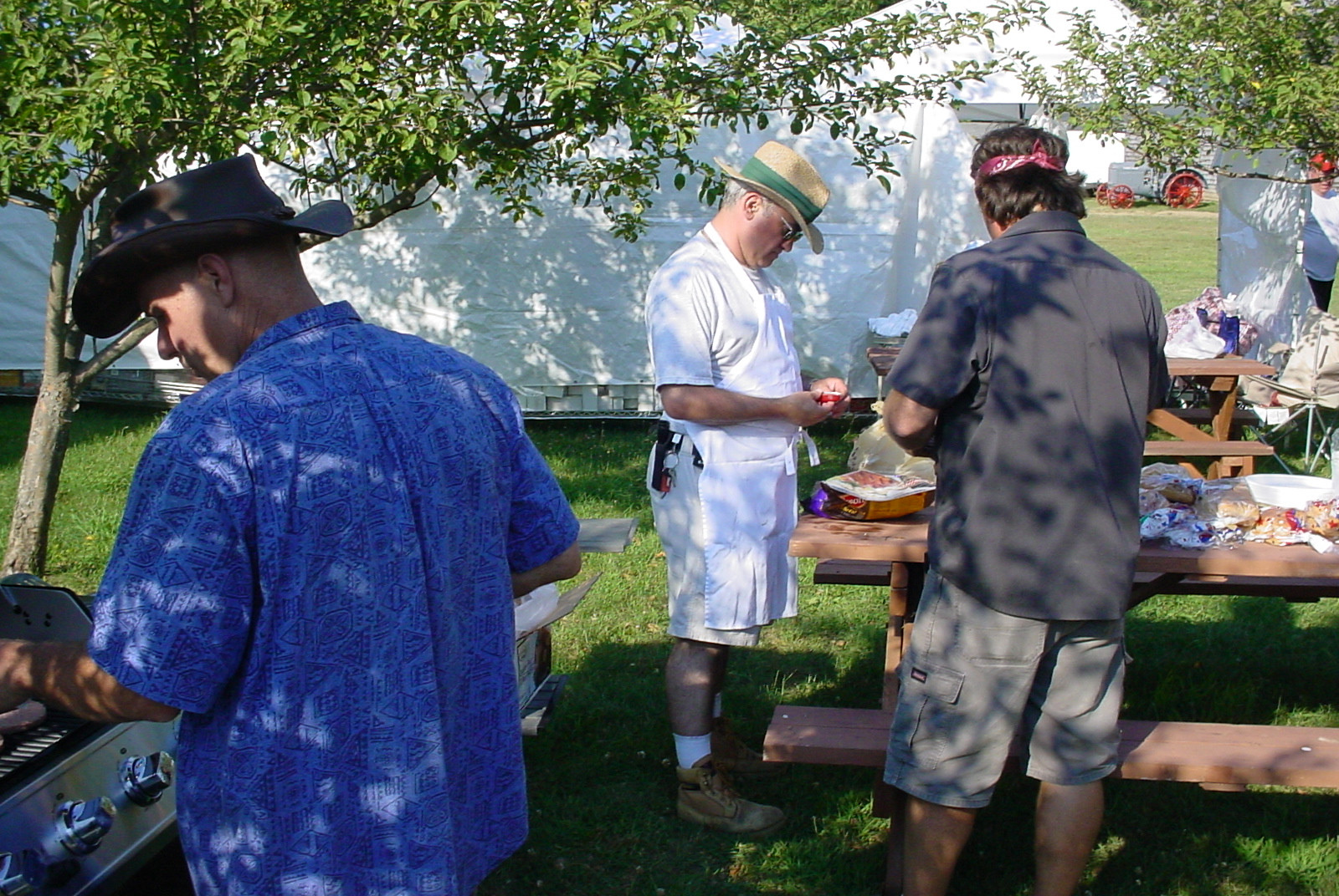 Barbecuing at the picnic