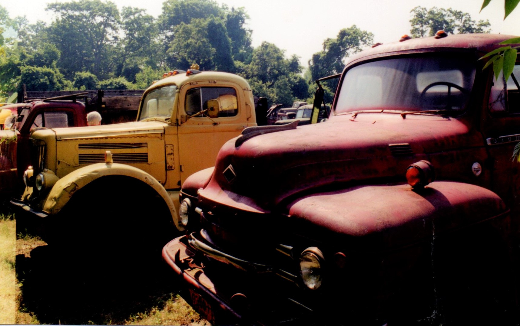1957 White & 1951 Diamond T - Ron Bush