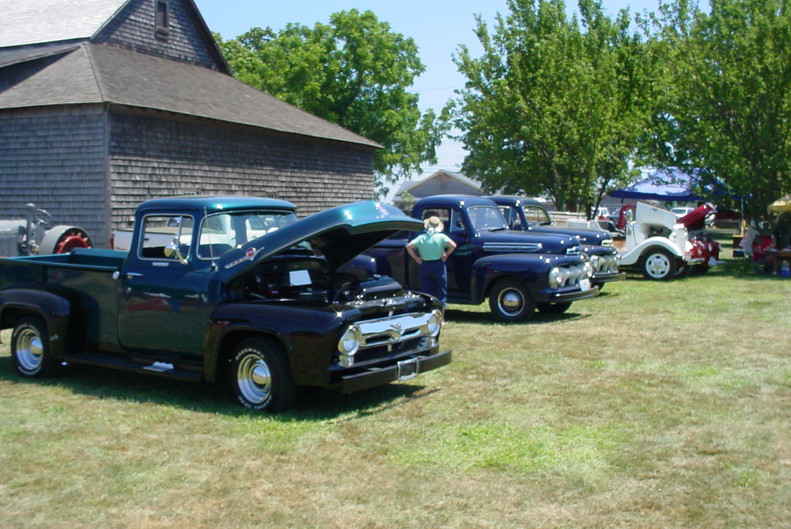 Line up of Ford trucks