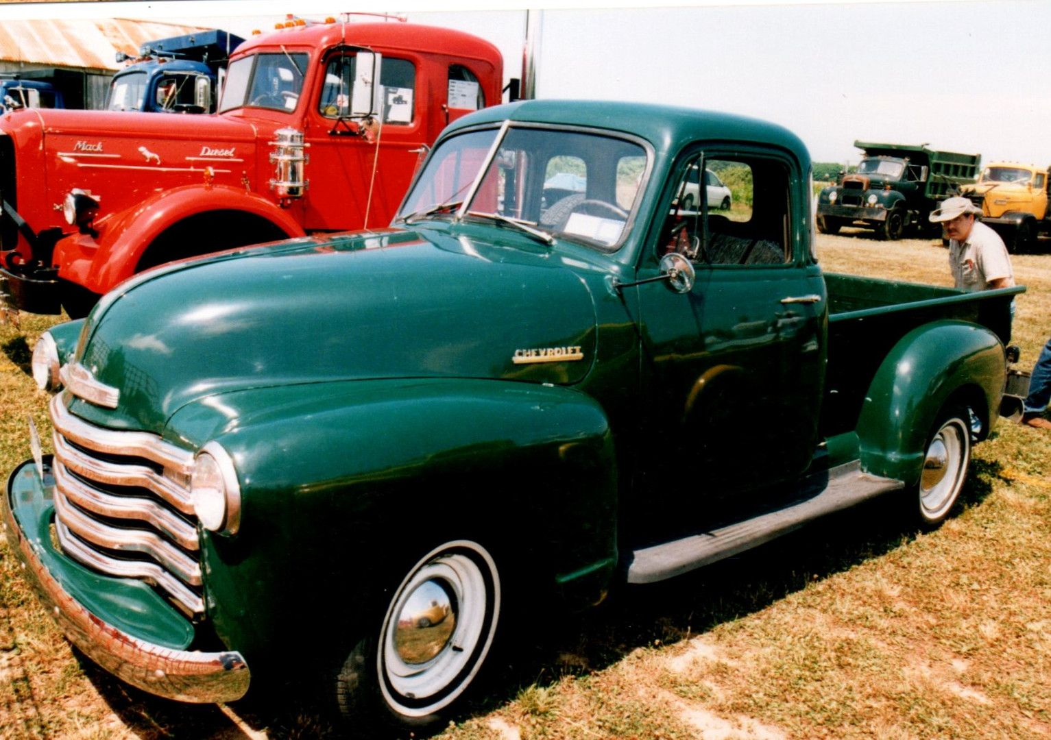 1952 Chevrolet 3100 pickup - Sandy Migotsky