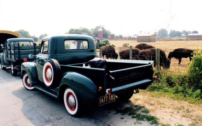 1953 Chevrolet pickup at the meeting location at the North Quarter Buffalo Ranch in Calverton
