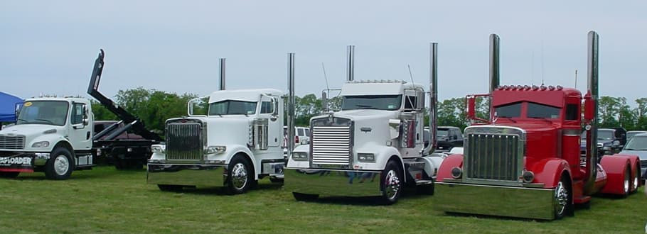 3 Peterbilts and a Freightliner