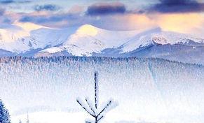 winter4_edited.jpg