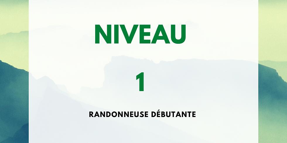 Randonnée grotte d'Harpéa et sources de la Nive