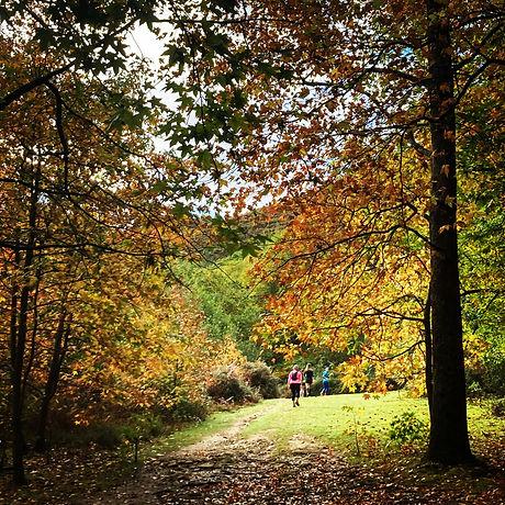 Trail féminin _ Pyrénées - Pays Basque _ Lilika