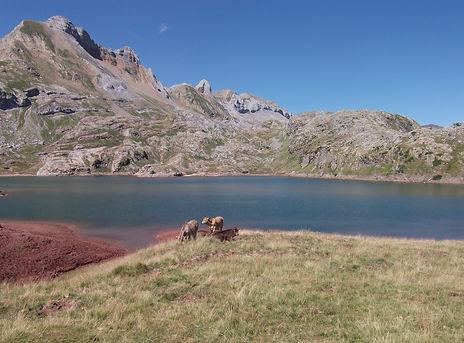 Randonnée dans les Pyrénées - Vallée d'Aspe - Lescun _ Lilika