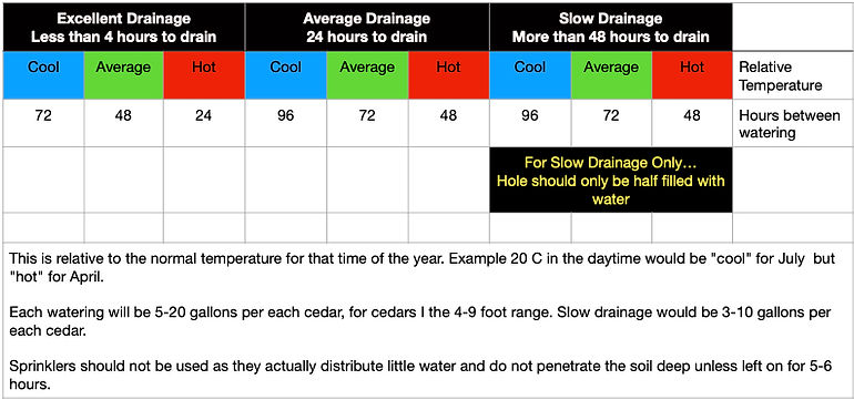 watering table.jpg