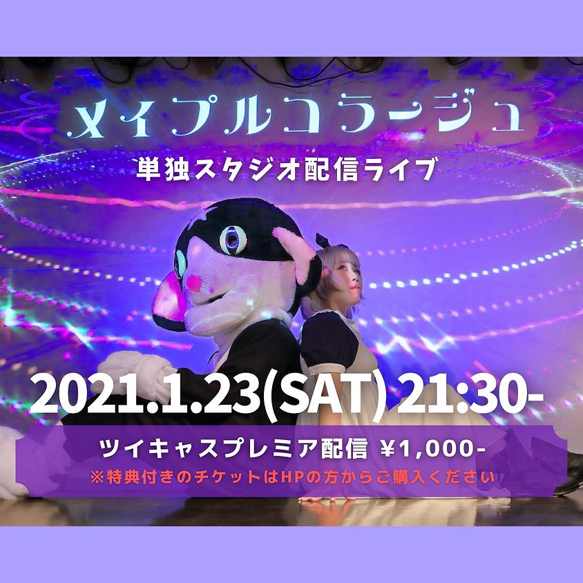 2021/1/23(sat) スタジオ配信ライブ(ツイキャスプレミア配信)