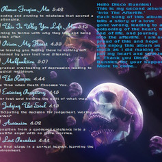 Into The Afterlife Back Cover Final.jpg