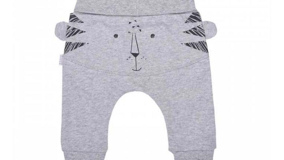 Active Pants / Grey