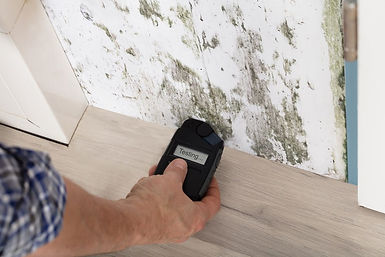 mold inspections passaic county nj