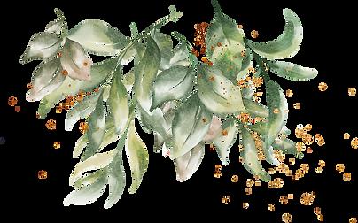 bottom leaves.png