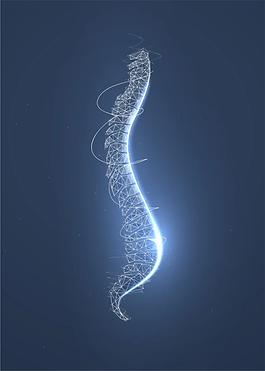 spine.webp