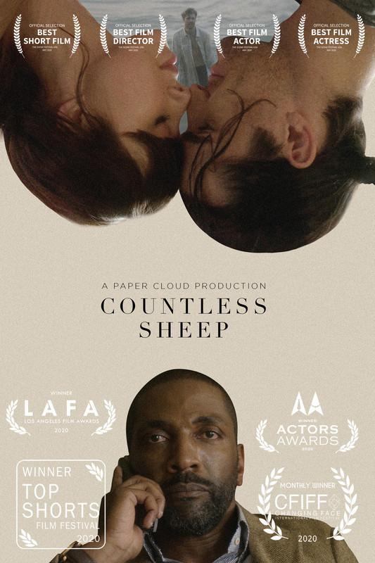 Countless Sheep