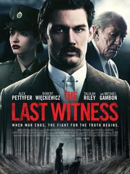 The Last Witness.jpg