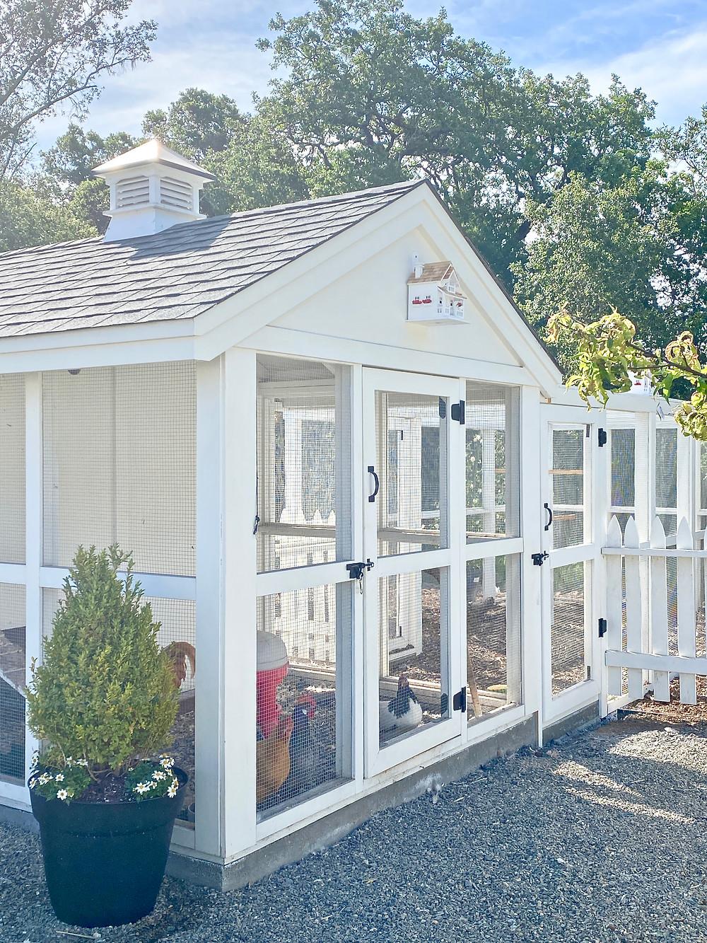 Charming chicken coop design at Rock Haven Farm, backyard chicken coop, chicken coops..