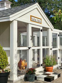 chicken coop design, from homeless to fancy hotel