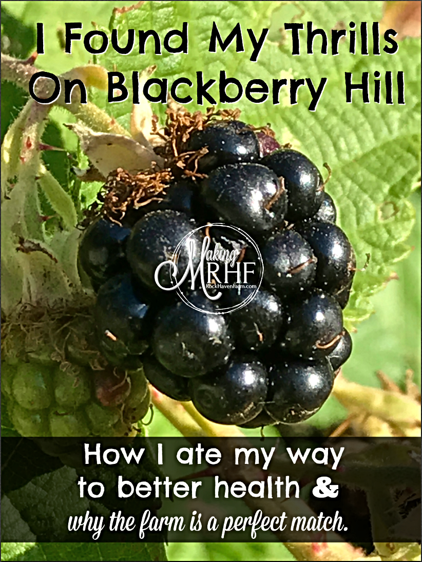 A health benefit from eating blackberries on Rock Haven Farm.