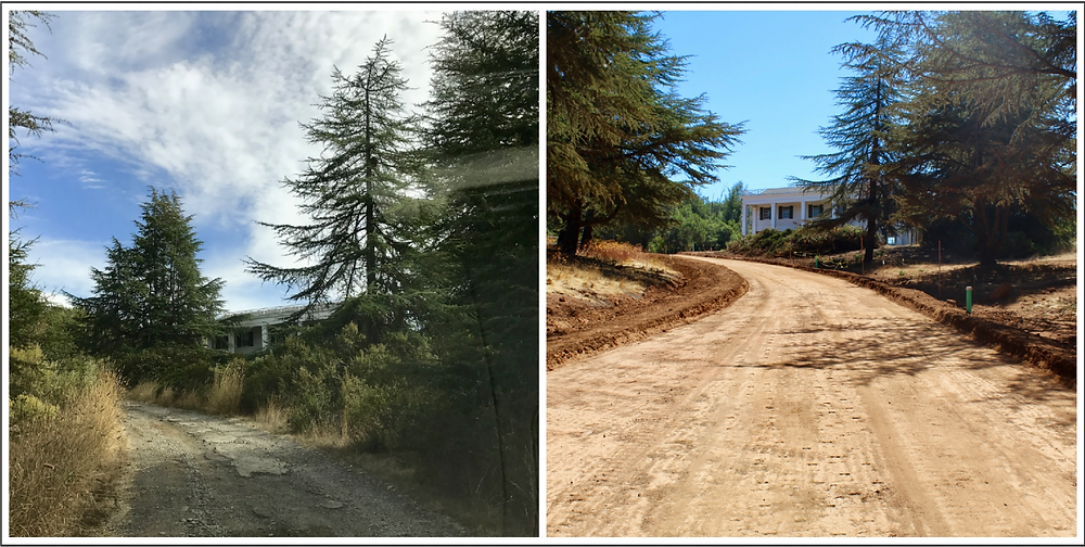Rock Haven Farm driveway transformation