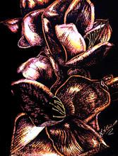 In Bloom -Purple Mixed MediaJPG